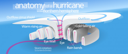 Hurricanes all have a circular structure with bands of wind and rain.