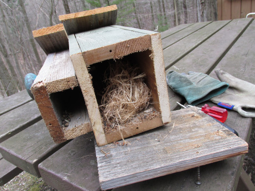 Clean out your bird houses!