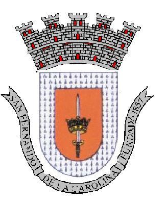 Carolina Coat of Arms