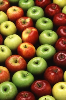 Apples Are Stone Fruits
