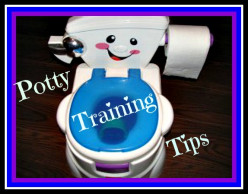 The Best Potty Chair for Potty Training Toddlers: The Fisher Price Cheer for Me! Potty Seat