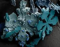 Beautiful water crystals, each one slightly different, no two the same.