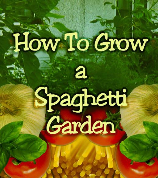 Spaghetti Garden