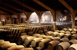 Oak barrels of sherry fermenting and aging during the solera proccess.