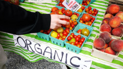 How to Develop a More Organic Lifestyle