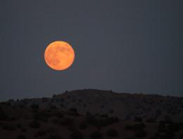 Blue Moon rising.