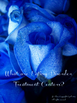 What Are Eating Disorder Treatment Centers