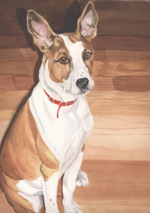 "Sport, watercolor 14 x 11""                             My best boy, and a very mixed breed"