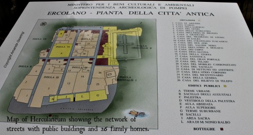 Map of the streets of Herculaneum showing public buildings and 26 family homes.