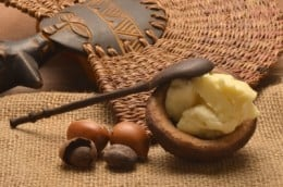 Shea butter comes from the nut of the Shea tree, found in West Africa.