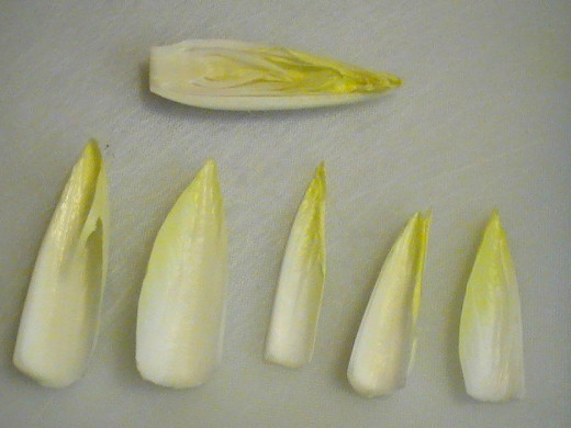 Endive Leaves: Use like tortilla chips for spreads, or to scoop dips