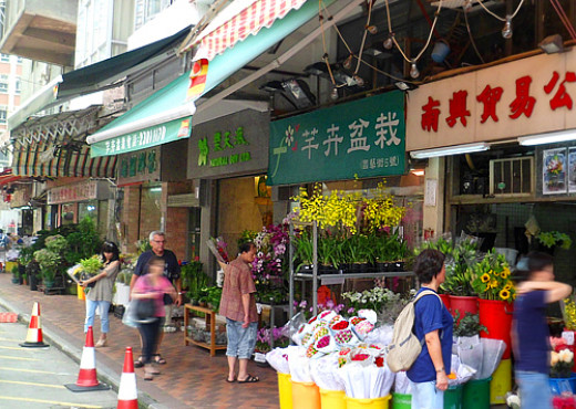 Shops along Flower Market Road