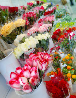 Roses and other exotic blooms for sale