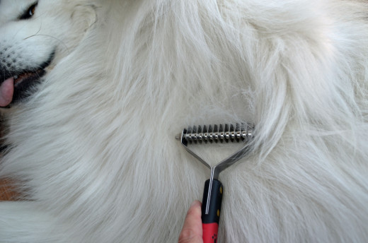 The shedder tool is great for pulling off loose fur without sharp teeth to poke skin.