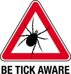 Five Things You Need To Know For Tick Season!