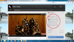 Add Your Blog or Web Site Link To YouTube