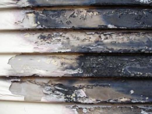 Burnt siding