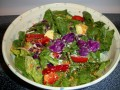 A Healthy Salad - Live Green Salad