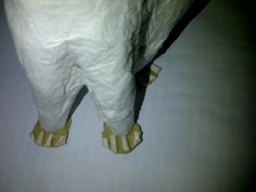 The cat's feet and toes.