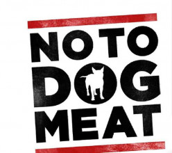 Say NO to Eating Dog Meat!