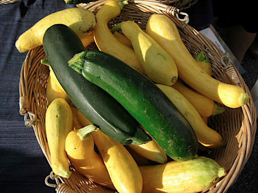 Tips for Cooking Delicious Squash