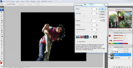 Click Refine Edge and make some selection adjustments