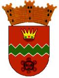 Jayuya PR, Coat of Arms