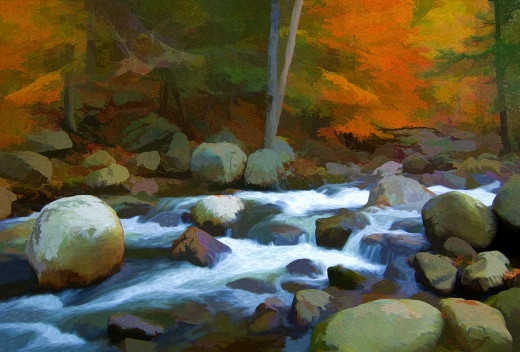 Stony Brook Stream - Steve Zimic