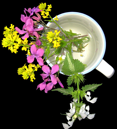 "Freshly picked ""weeds"" or wildflowers are much cheaper than buying from a florist!"