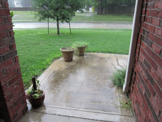 Rain during the summer drought