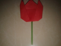 tulip flower glued to a straw