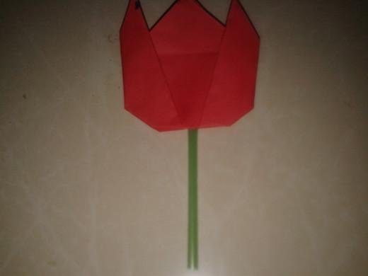 tulip flower glued to a straw
