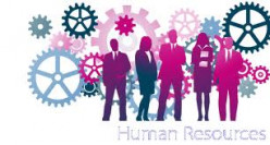 Human Resources:  The Diamond in the Rough for Psychology Majors