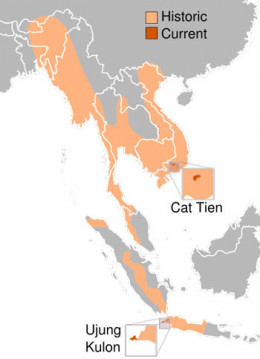 Areas where the Javan Rhinos lived and live now