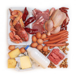 Is High Protein Diet Safe