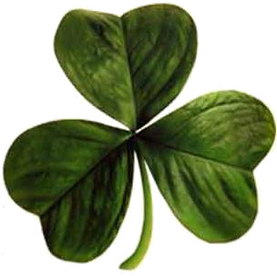 The Holy Trinity is like this three leaf clover: 3 Divine Persons in a single God.