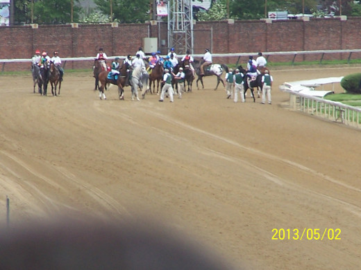 THE LAST TURN IS THE FIRST TIME WE CAN SEE THE HORSES!