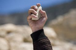 Stoning to death: What Qur'an and Bible say?