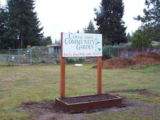 Community gardens everywhere you look