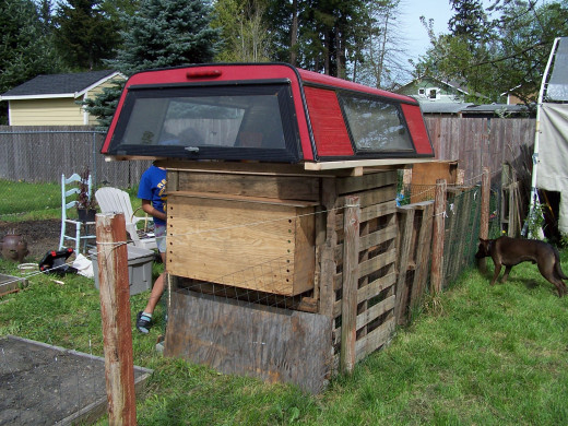 Our very clever chicken coop...cost....$45