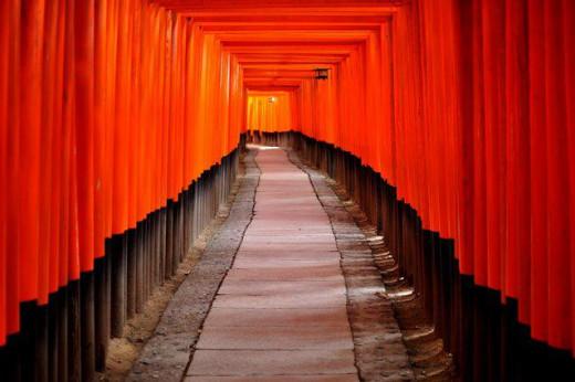 The Thousand Gates of Fushimi