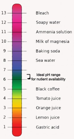 The pH range for optimal growth of most garden plants, showing the pH of various substances above and below that range.