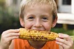 Feeding our kids ? corn ?   I don't think so.