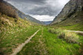 opt for road less traveled - maybe not more profitable, but happier