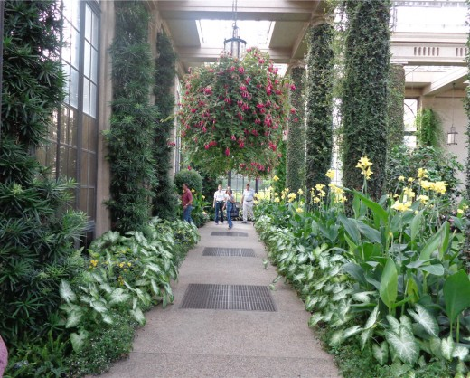 Longwood Gardens Indoor Walkway