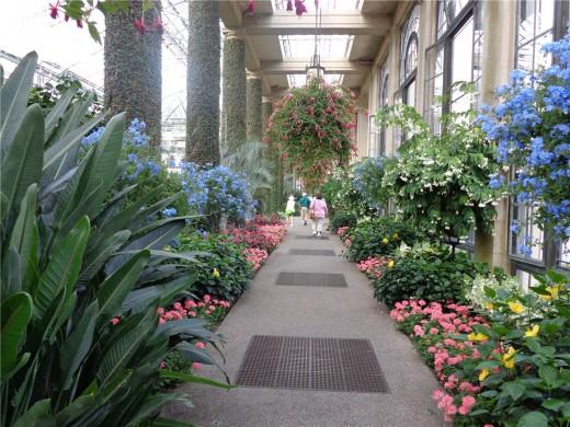 Longwood Gardens Indoor Garden