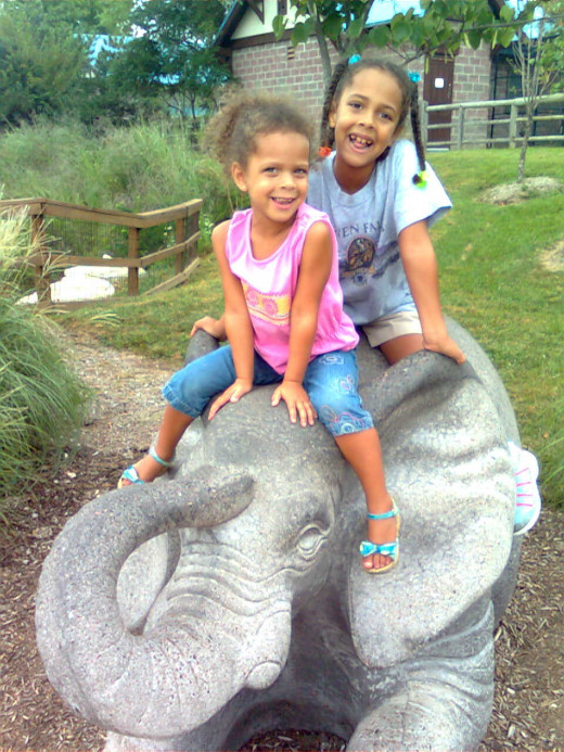 Riding an Elephant at the Kansas City Zoo