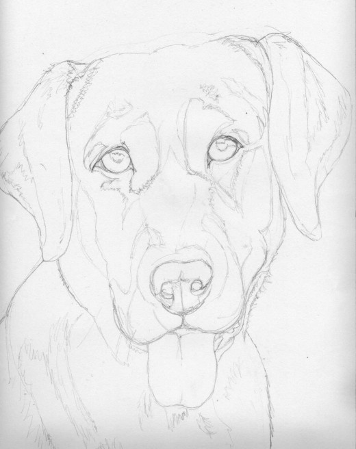 Preliminary Sketch for Memories of Molly 14 x 11