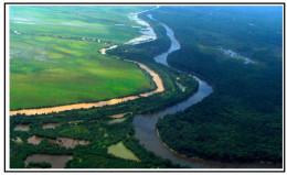 Cogwheel Levee - Trinity River