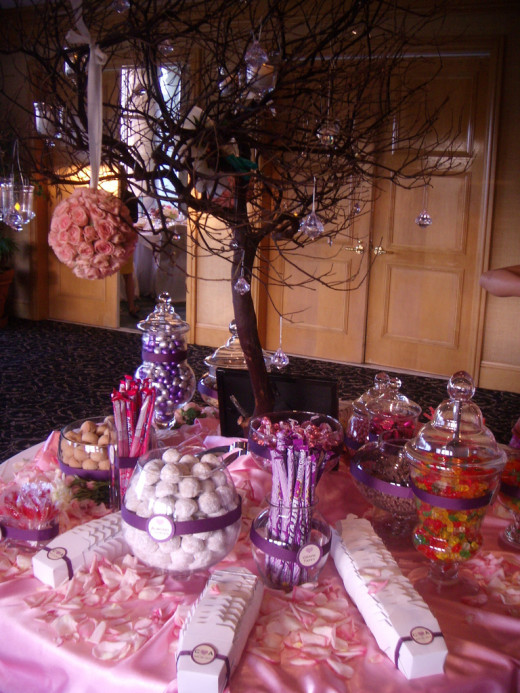 Pink Candy Buffet with Manzanita branches tree.